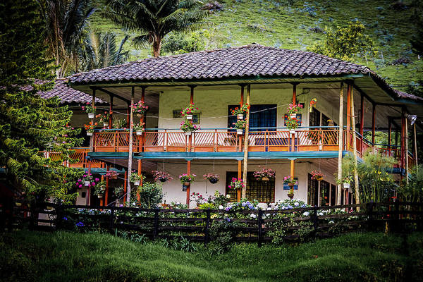 Photograph - La Finca De Cafe - The Coffee Farm by Francisco Gomez