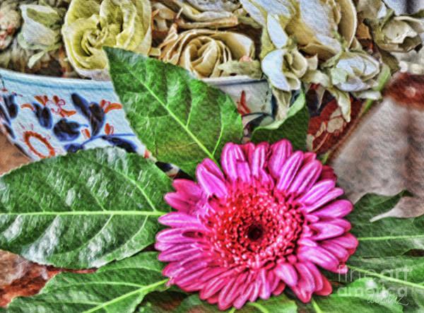 Photograph - La Flor De La Castellana by Diana Raquel Sainz