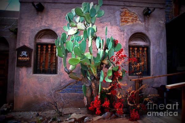 La Hacienda In Old Tuscon Az Art Print