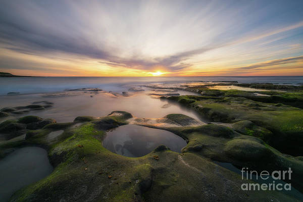 Photograph - La Jolla  by Michael Ver Sprill