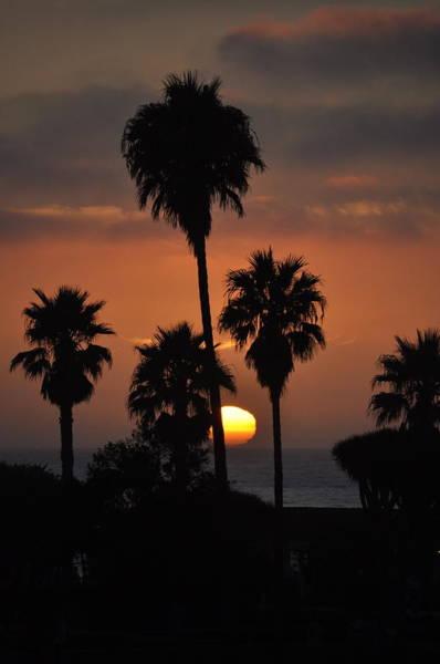Photograph - La Jolla Sunset by Bridgette Gomes