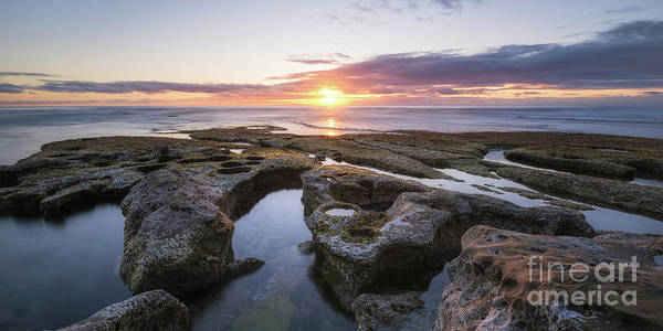 Photograph - La Jolla Tide Pool Sunset Pano by Michael Ver Sprill