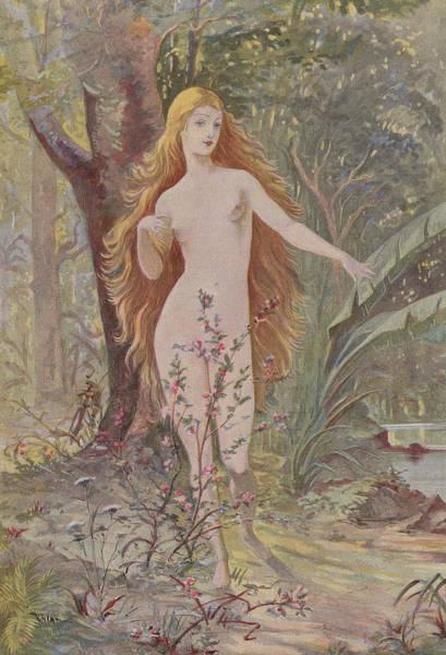 Ancient Woodland Painting - La Naissance De La Femme  by French School