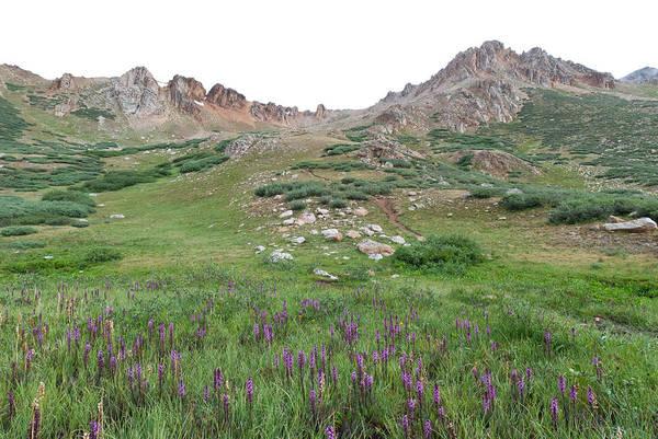 Photograph - La Plata Peak by Cascade Colors