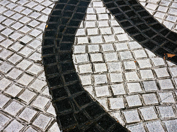 Photograph - La Rambla Tiles In Barcelona by John Rizzuto