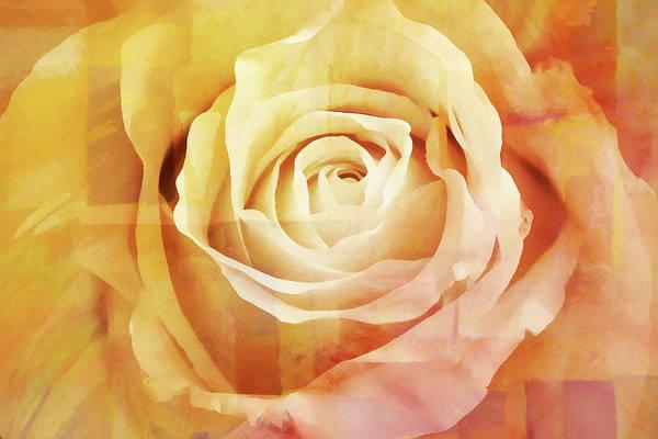 Painting - La Rose by Lutz Baar