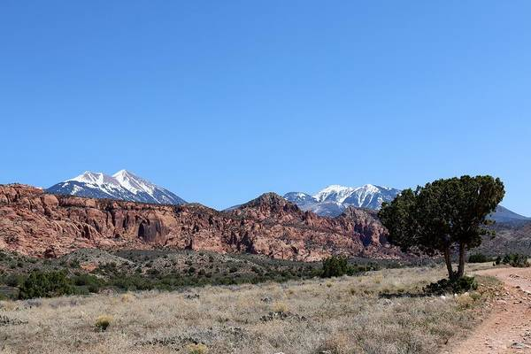 Photograph - La Sal Mountains - 3  by Christy Pooschke
