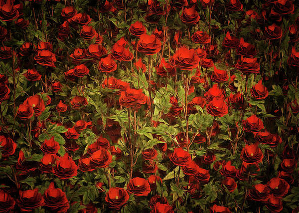 Painting - La Sevilliana Roses by Jan Keteleer