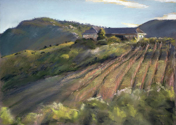 Painting - La Vierge Winery by Christopher Reid