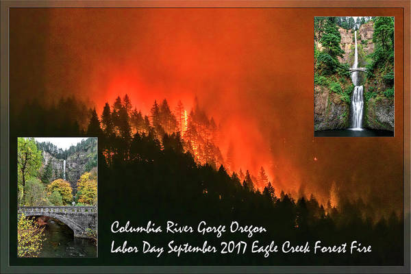 Photograph - Labor Day Eagle Creek Forest Fire by Wes and Dotty Weber