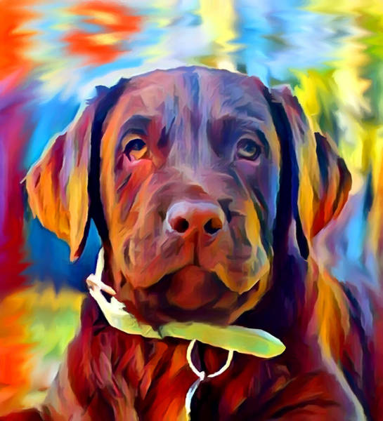 Wall Art - Painting - Labrador Puppy by Chris Butler