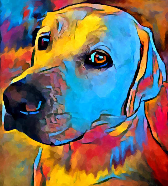 Wall Art - Painting - Labrador Retriever by Chris Butler