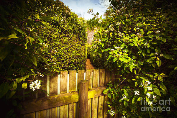 Difficult Photograph - Labyrinth Wrong Turn by Jorgo Photography - Wall Art Gallery