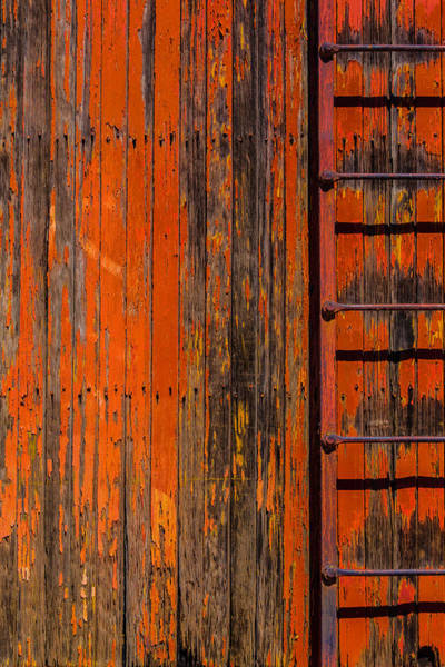 Box Car Photograph - Ladder On Boxcar by Garry Gay