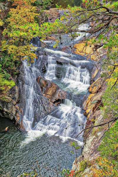 Photograph - Ladore Falls by Dale R Carlson