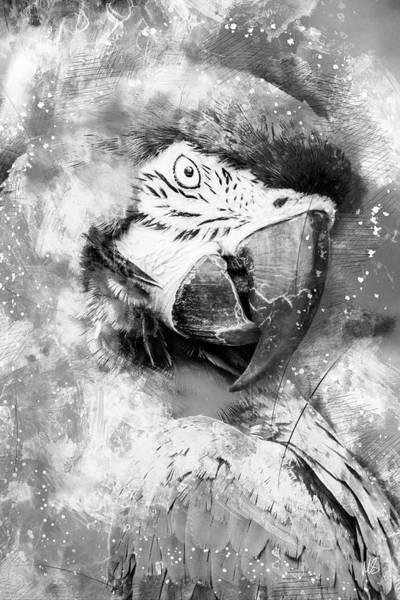 Wall Art - Mixed Media - Lady Bird Bw by Melissa Smith