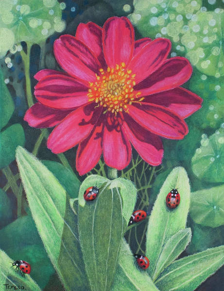 Lady Bug Drawing - Lady Bug Picnic by Teresa Frazier