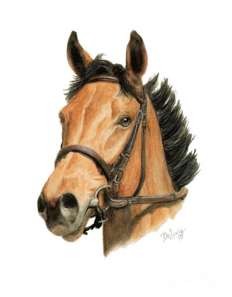 Wall Art - Painting - Lady Eli by Pat DeLong