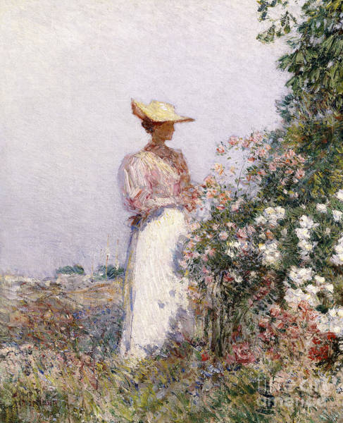 Posy Wall Art - Painting - Lady In Flower Garden by Childe Hassam