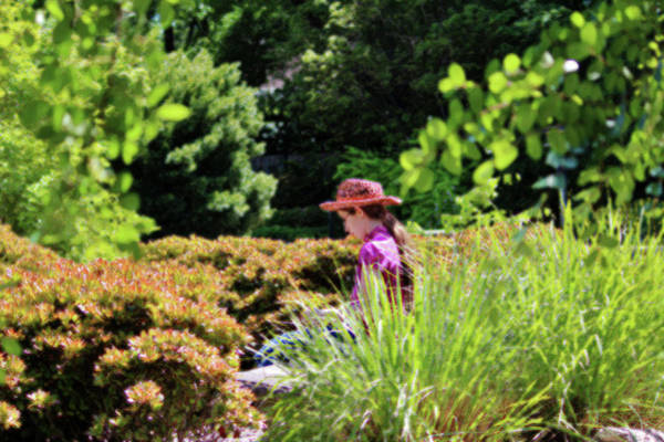 Photograph - Lady In The Garden by Cynthia Guinn