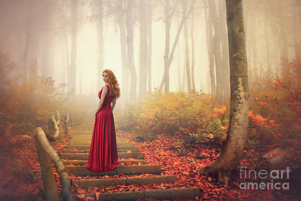 Lone Tree Wall Art - Photograph - Lady Of The Golden Forest by Evelina Kremsdorf