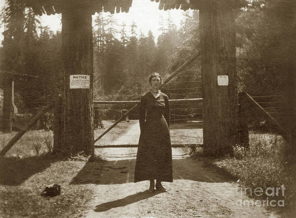 Photograph - Lady Standing On Front Of Gate To Bohemian Grove Circa 1920 by California Views Archives Mr Pat Hathaway Archives