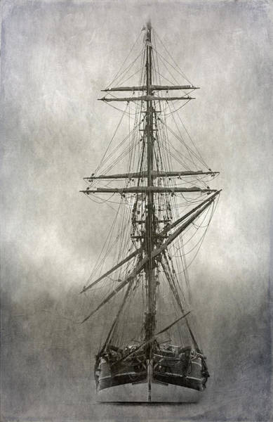 Wall Art - Photograph - Lady Washington by Angie Vogel