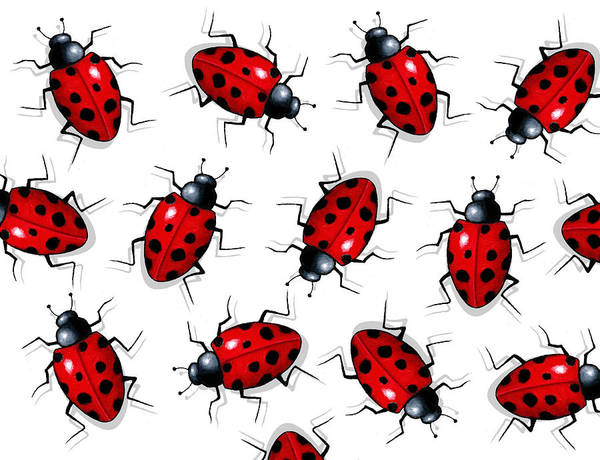 Wall Art - Painting - Ladybug Pattern by Joyce Geleynse