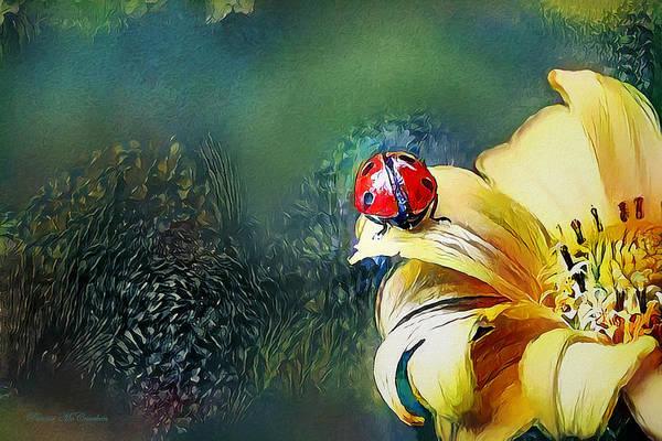 Digital Art - Ladybug by Pennie McCracken