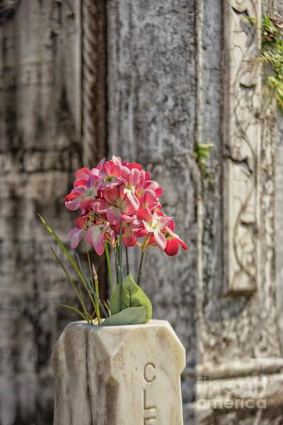 Famous Cemeteries Photograph - Lafayette by Patricia Hofmeester