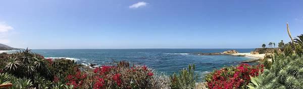 Laguna Beach Mixed Media - Laguna Beach And Flower Views by Monique Neugebauer