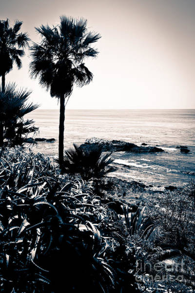 Tint Wall Art - Photograph - Laguna Beach California Black And White by Paul Velgos