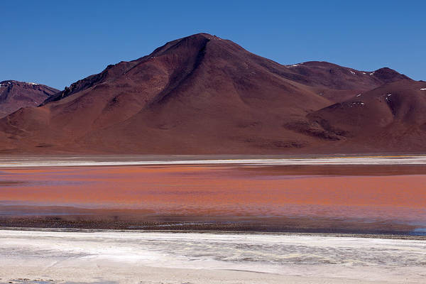 Photograph - Laguna Colorada And Mountains by Aivar Mikko