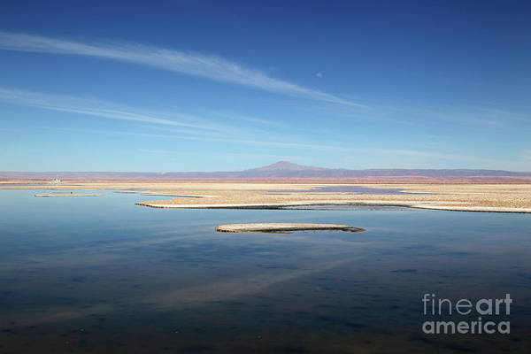 Photograph - Laguna De Chaxa Salar De Atacama Chile by James Brunker