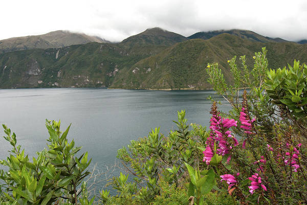 Photograph - Laguna De Cuicocha by Cascade Colors