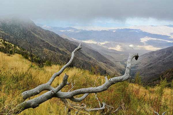 Photograph - Laguna Mountain Desert View by Kyle Hanson
