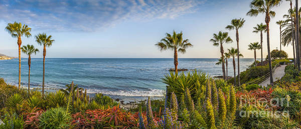 Wall Art - Photograph - Laguna Panorama by David Zanzinger