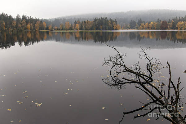 Woodland Wall Art - Photograph - Lake And Autumn Forest by Michal Boubin