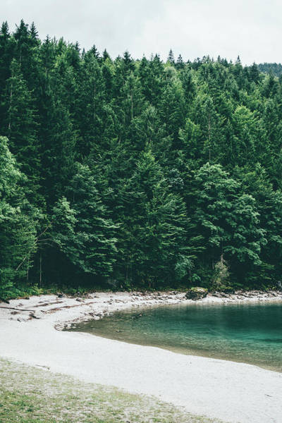 Wall Art - Photograph - Lake Beach By Forest by Pati Photography