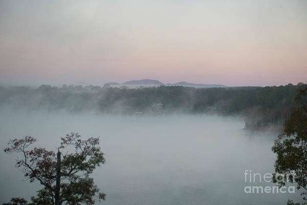 Photograph - Lake Bowen Foggy Morning by Dale Powell