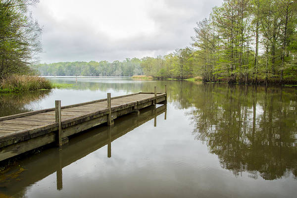 Photograph - Lake Chicot 01 by Jim Dollar