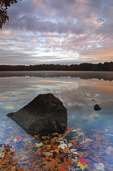 Photograph - Lake Cochituate by Juergen Roth