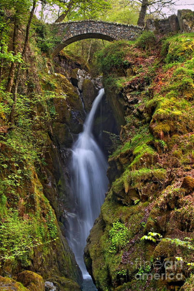 Aira Wall Art - Photograph - Lake District - Aira Force by Dave Lawrance