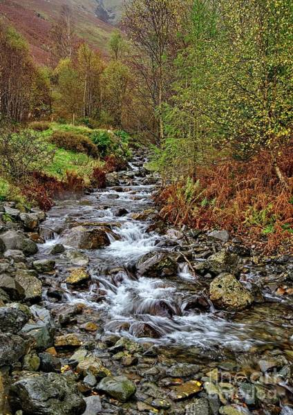 Photograph - Lake District Mountain Stream by Martyn Arnold