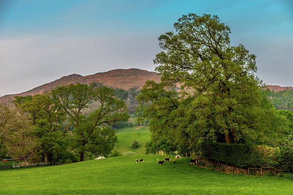 English Countryside Photograph - Lake District Pastoral by W Chris Fooshee