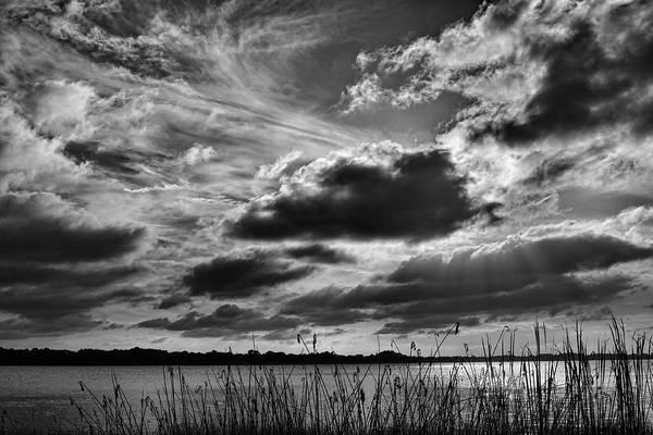 Photograph - Lake Dora Black And White by Roberto Aloi
