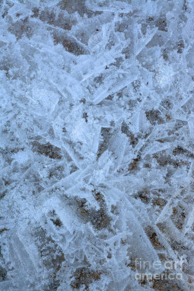 Photograph - Lake Erie Ice by Charles Owens