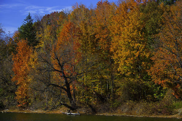Photograph - Lake Fall Colors by Garry Gay