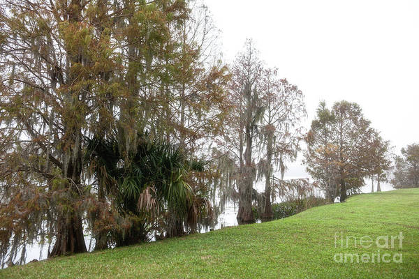 Photograph - Lake Highland Fog by Dale Powell