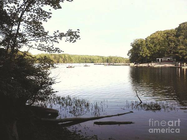 Lake At Burke Va Park Art Print